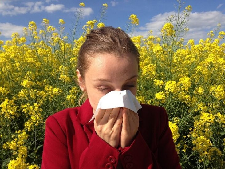 Hay fever sufferer
