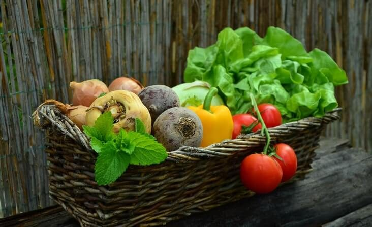 dietitian nutrition Melbourne