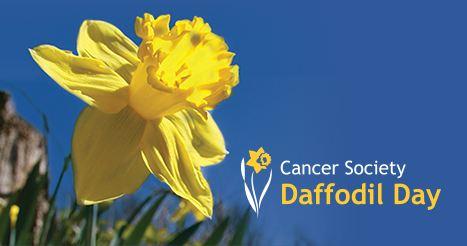daffodil day pvh medical